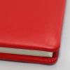 Foto-Gästebuch Zeus aus rotem Vollrindleder
